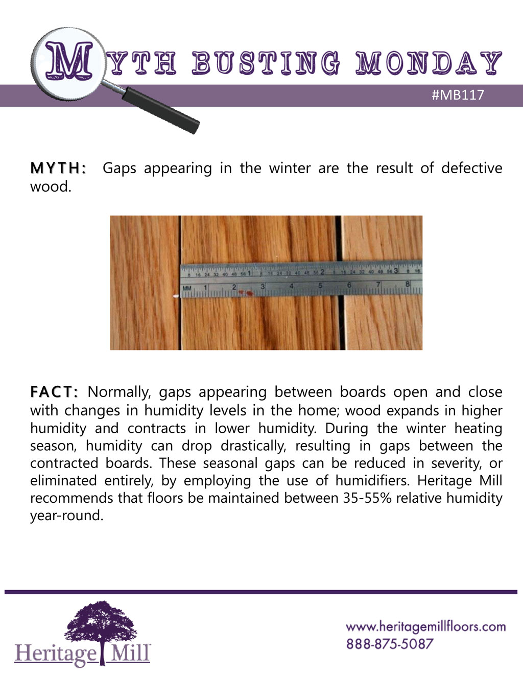 myth winter gaps